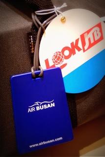 airbusan333c6.jpg