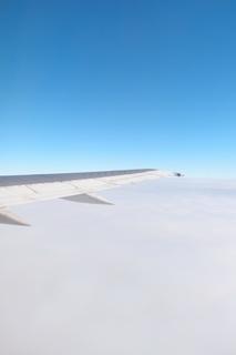 airbusan333c7.jpg