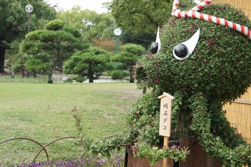 hyoAkashijo4.jpg