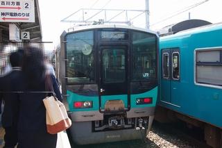 irohazu2.jpg