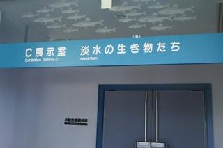shi12museum29.jpg