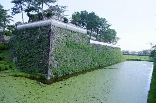 shimabaras5.jpg