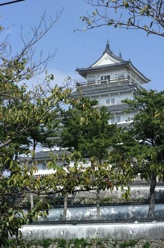 shimabaras6.jpg