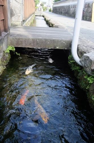 shimabarasho21.jpg
