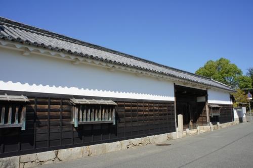 akoShiro33.jpg