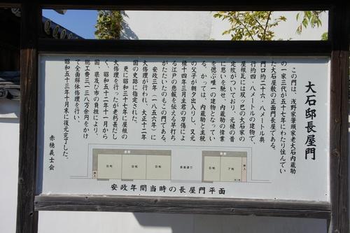 akoShiro35.jpg