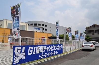 bqglp1-2.jpg