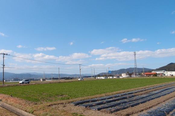 minaminosato1.jpg
