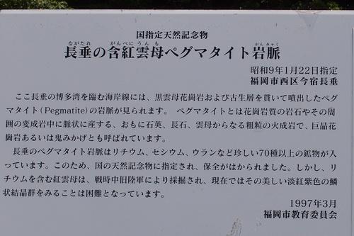 nagatare6.jpg
