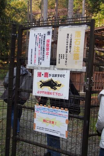 nishiha5c13.jpg