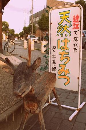 shi12hachimangu11.jpg