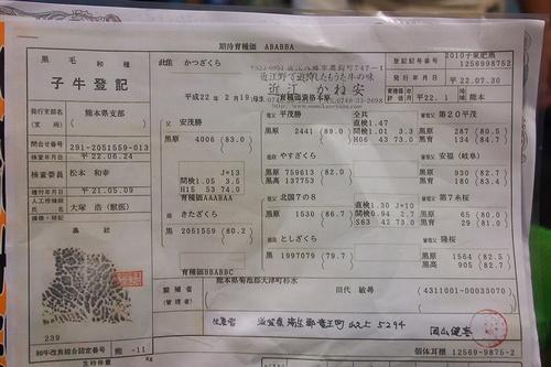 shi12kaneyasu4.jpg