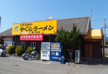 wayagura4.jpg